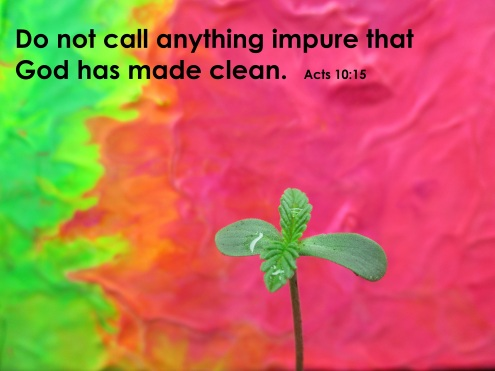 Acts 10